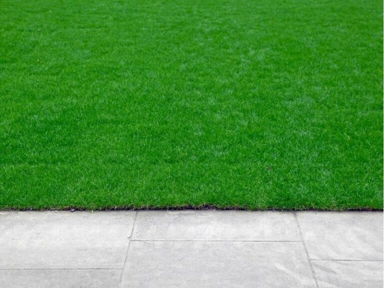 Edging service with mowing by Eco-Lectric of Bradenton