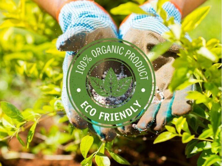 Fertilizing treatment service by Eco-Lectric of Bradenton
