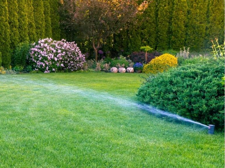Irrigation and Sprinkler service by Eco-Lectric of Bradenton
