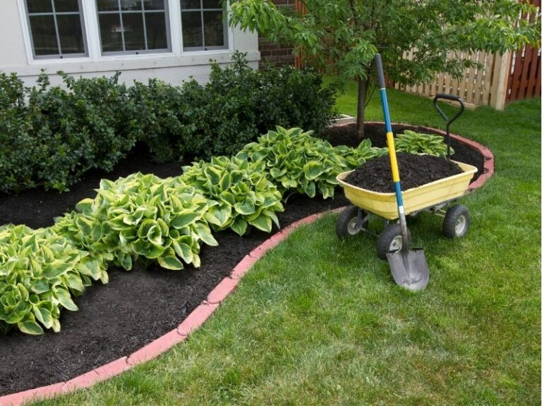 Mulching service by Eco-Lectric of Bradenton