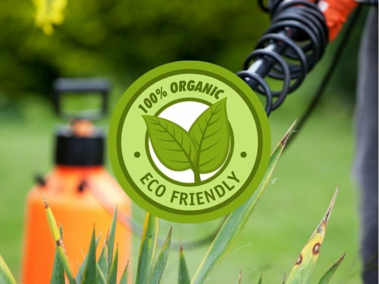 Pest Control service by Eco-Lectric of Bradenton