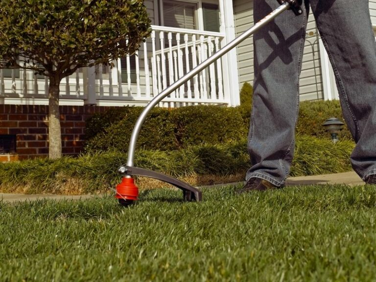Weed eating service by Eco-Lectric of Bradenton