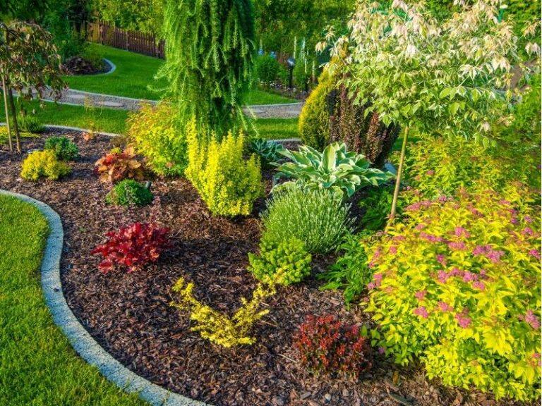 Landscape design service by Eco-Lectric of Bradenton
